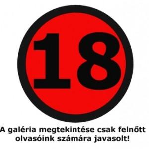 18askarika_500